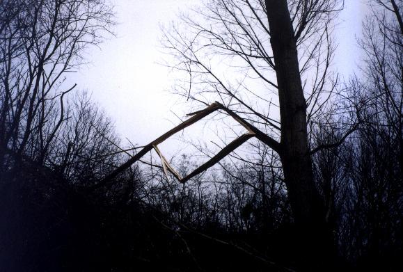 http://www-evasion.imag.fr/Membres/Fabrice.Neyret/perso/zimaj/parallelogram.jpg